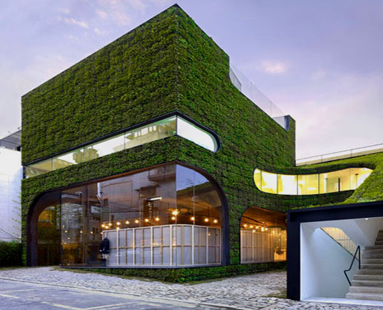 What Is Green Architecture LEED Resource